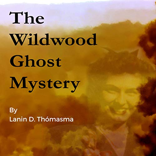 The Wildwood Ghost Mystery cover art