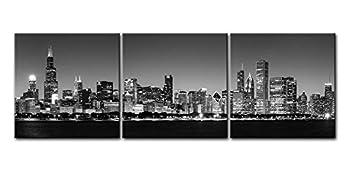 Best chicago night skyline Reviews