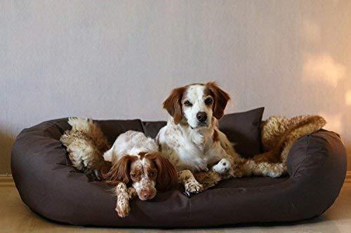 tierlando® Hundebett Orthopädisch Große Hunde - Ares Visco Oval - Hundesofa Hundekissen Dog Bed Waschbar XXL Braun