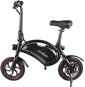 Windgoo Elektroroller, Elektro Scooter mit 350W Motor/6.0 Ah Batterie, Höchstgeschwindigkeit 25Km/h/Maximale Belastung 120kg, klappbar E Scooter (Black)