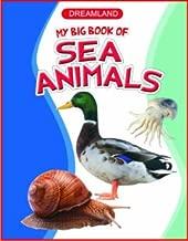 Sea Animals (My Big Book)