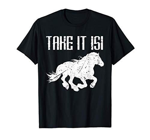 Take it Isi Isländer Pferde Pferdefreunde Reitsport Reiten T-Shirt