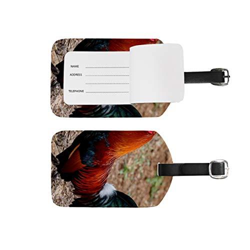 Etiquetas de equipaje para nombre de dirección, 2 unidades de etiquetas de identificación portátil para tarjetas de decoración, accesorios de viaje para maletas, bolsos, gallos, granjas