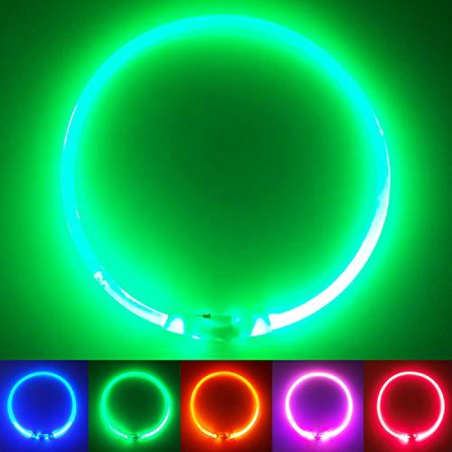 PetSol LED Leuchthalsband für Hunde USB Aufladbar LED Hundehalsband Stück hundehalsband Leuchtend Wiederaufladbares und Längenverstellbareres mit DREI Beleuchtungsmodi für Hunde und Katzen (Grün)