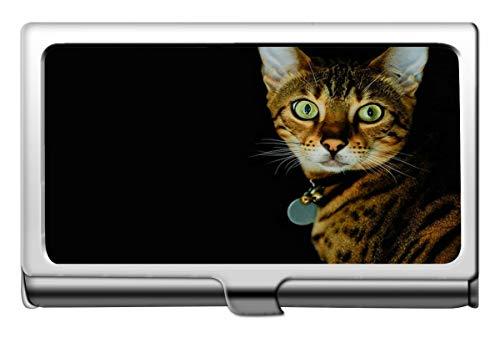 Tarjeta de visita profesional, caja de tarjeta de presentación con nombre de leopardo de la familia de gatos y gatos