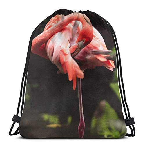 Daypack Flamenco Elegante Mochila Niñas Deportes Gym Bag Estanca Bolsa De Gimnasia para Natación, Escuela, Viaje, 36X42Cm