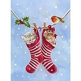 Kits de pintura de diamante Bordado Bricolaje Diamante Calcetín de Navidad Pintura de Pájaro y Pájaro Plaza Completa Mosaico Punto de Cruz Regalo de Navidad Decoración de Hogar 45x60cm