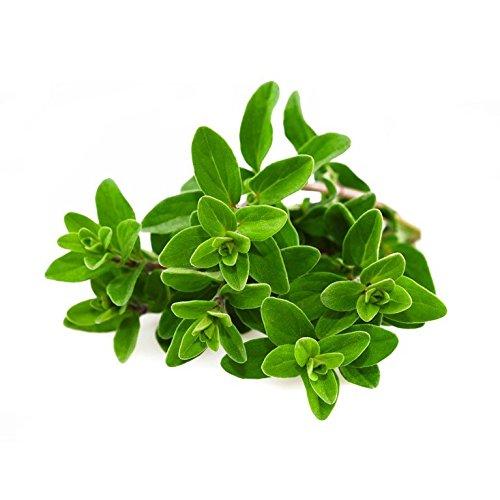 Maggiorana foglie - 150g
