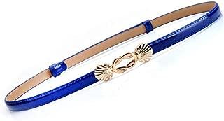 SGJFZD New Ladies Fashionable Leather Thin Belt Dress Shirt Pull Adjustment Fine Belt Paint Leather Waist Chain (Color : Blue)