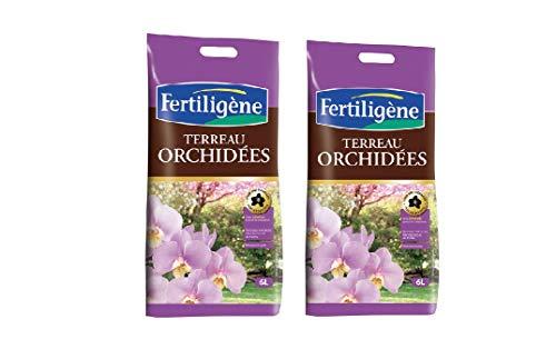 FERTILIGENE Terreau orchidées lot 2 Sacs de 6l FORC6
