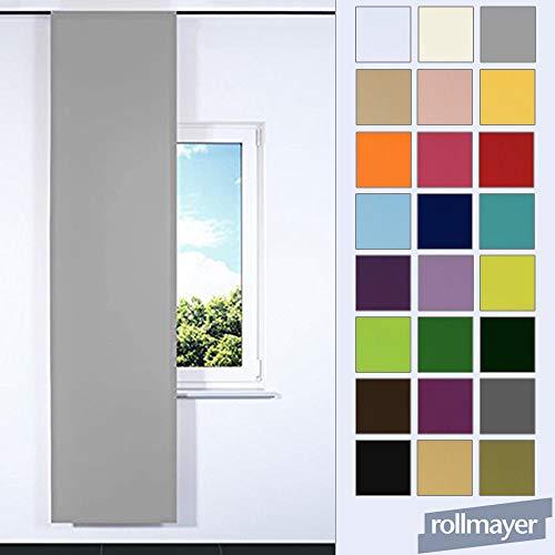 Rollmayer SCHIEBEVORHANG FLACHENVORHANG SCHIEBEPANEL SCHIEBEGARDINE Vorhang RAUMTEILER 60 x 245 cm Kollektion Vivid (Silbergrau 31, Klettband)