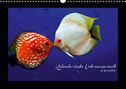Kalendarische Unterwasserwelt (Wandkalender 2021 DIN A3 quer)