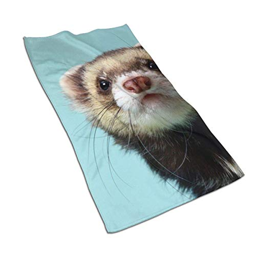 XCNGG Alphabetical Ferret Microfiber Bath Towels Lightweight Soft Highly Absorbent Washcloth for Bathroom Gym Sports Spa Travel Camping (27.5' X 15.7'