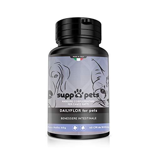 MyLab nutrition srls SUPP4PETS DAILYFLOR Benessere intestinale e Difese Immunitarie 60 CPR da 1g - Mangime Complementare Naturale con Fibre, Vitamina C e Probiotici - Fornitura per 3 cicli