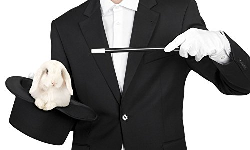 Zauberer Kostüm Zubehör Set (59er Hutgröße)