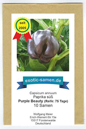 Fast schwarzes, süßes Paprika - Purple Beauty - 10 Samen