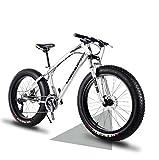 LUO Fat Tire Mountain Bike, Beach Snow Bicycle, Beach Bike, Double Disc Brake 20...