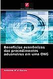 Benefícios econômicos dos procedimentos aduaneiros em uma ONG