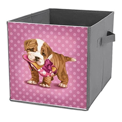 Cajas de almacenamiento plegables, Bulldog Inglés y Zapatos, organizador de contenedores para juguetes, estantes, ropa, libros
