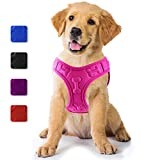 metric usa / Comfort Fit Pets Lightweight Soft Padded No Pull Small Dog Harness Vest ● Easy to Put on & Take Off ● Interior & Exterior Padded Puppy Harness ● Ensures Your Dog is Cool & Comfortable