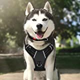 TIANYAO Dog Harness No Pull Reflective Oxford Material Soft Pet Vest Adjustable for Large Dogs Easy Control Harness with Dog Collar (L)
