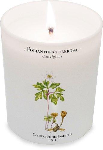 Carriere Freres Polianthes Tuberosa (Tuberose) Candle