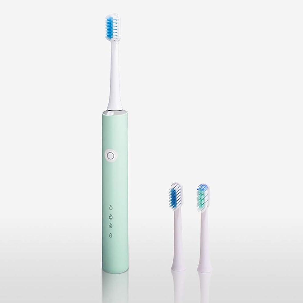 ベーコンジャム別々にQiqibaihuo-電動歯ブラシ 電動歯ブラシの大人の効果的な波動四ギア振動充電式音響ガルバニック歯ブラシ (Color : Green)