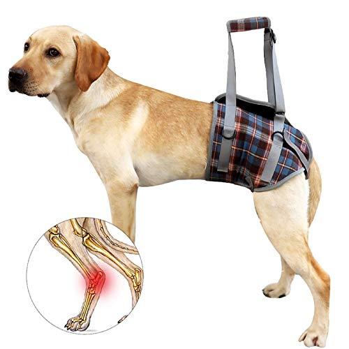Recuperación de perros Sling Lift Harness Portátil PET rehabilitación Chaleco Correas transpirables ajustables Soporte para ancianos, discapacitados, Lesiones conjuntas, Artritis, Parálisis Perros cam