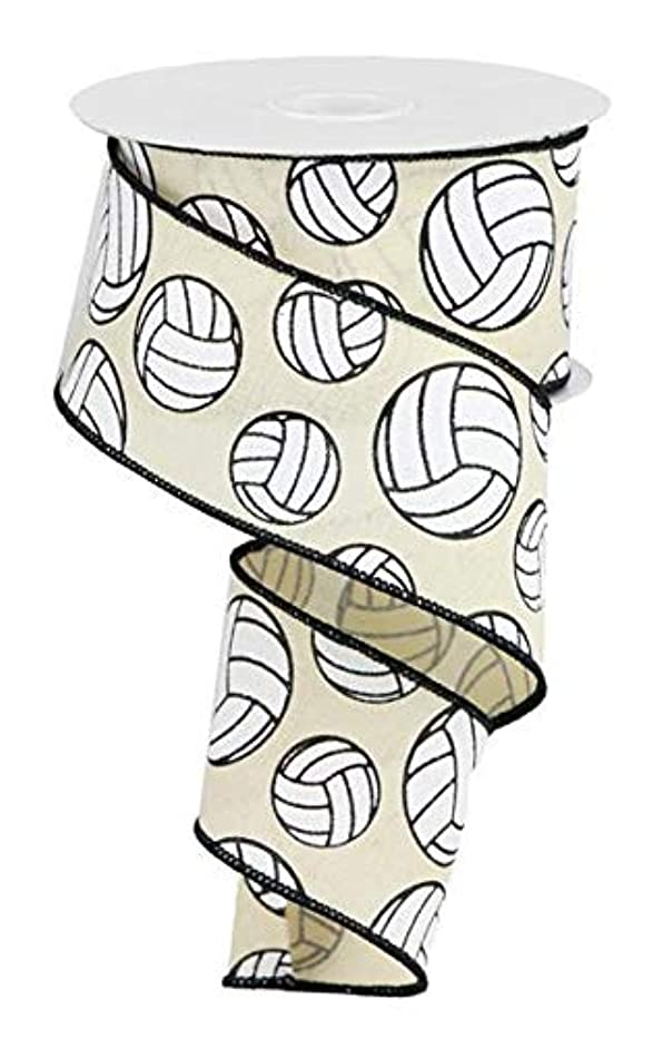 EXPRESSIONS Volleyball Burlap Wired Edge Ribbon - 2.5