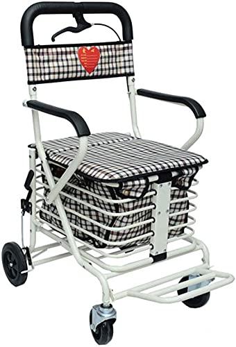 Rollator Walker Seniors y adultos Médico Rolling Walker Rollator, Walker & Rest Asiento para ancianos, discapacitados, pacientes de movilidad limitada, estabilizador para caminar para personas posteri