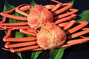 訳あり 鳥取県境港産 ボイル紅ずわいがに A級品・B級品混合セット (8〜10枚・約3kg)