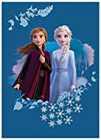 0908 ディズニー アナと雪の女王 フリース ブランケット 毛布 ひざ掛け 100cm x 140cm Disney Frozen fleece blanket [並行輸入品]
