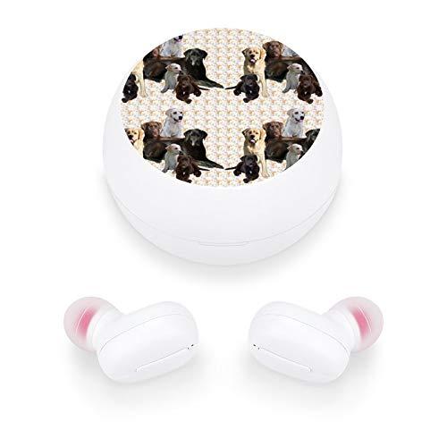 Audífonos inalámbricos elegantes y hermosos auriculares Bluetooth con mini estuche de carga, regalo para mujeres y niñas para llamadas/hogar/oficina/correr/fitness (mural de Labrador)