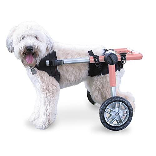 Walkin' Wheels Dog Wheelchair - for Medium Dogs 26-49 Pounds -...