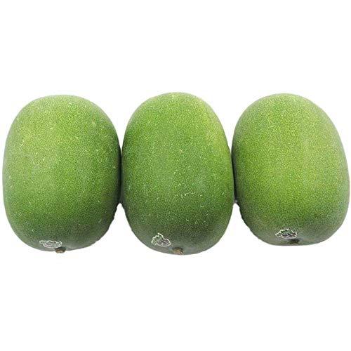 Mini semillas de melón de invierno verde suave, semillas de melón de invierno de frutas 300 granos