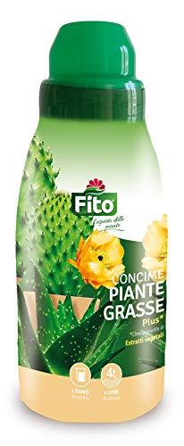 Fito 8006933066313 CONCIME Piante GRASSE, Verde