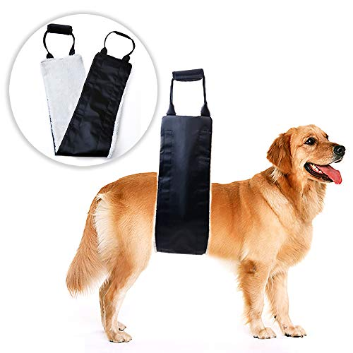 Dog Lift Support and Rehab Harness for Weak Rear Legs, Soft Sling Assist The Dog Who are Senior, Injured, Disabled and After ACL Surgery (Black)