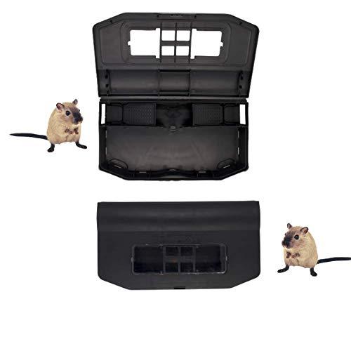 Dudexa Trampa para Ratones Vivos Multicaptura – Atrapa hasta 20 Roedores Pequeños sin Muerte – Solución Anti-Ratones Simple y Eficaz – Ratoneras sin Cepo, Pegamento ni Veneno (1 Pieza)
