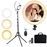 LED Ring Light 18 Inch Circel Light with Tripod Stand and Phone Holder, 416 LEDs 65W 3200K-5600K Color Temperature for TikTok Video, Makeup, YouTube, with Carry Bag(Upgraded)