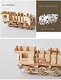 Macro PTUYZHYX Corte LÁSER DIY SAIPING Toys Toys 3D Puzzle de Madera Montaje Modelo Modelo de Madera Kits de artesanía Decoración de Escritorio para niños Niños (Color: Style2)