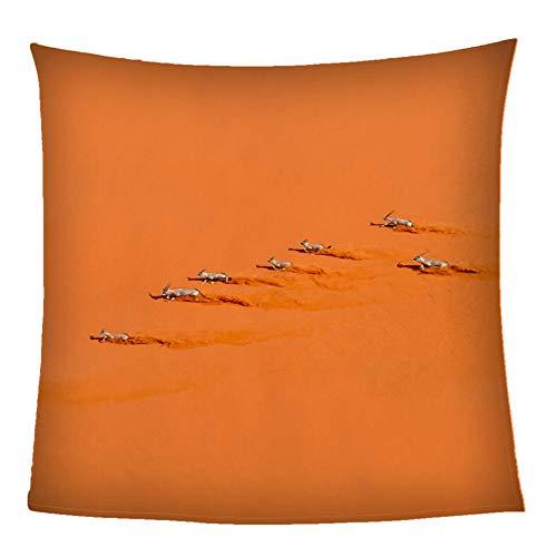 Mantas para Sofás De Franela Antílope Animal del Desierto Naranja Throw Manta Sherpa 150X200CM - Manta para Cama 90 Reversible De 100% Microfibre Extra Suave - para Todo Uso Multipropósito