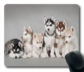 wskshop Husky Mouse Pad, New Design Cute Siberian Husky Puppy Family Mouse Pad Rectangle Mousepads 02