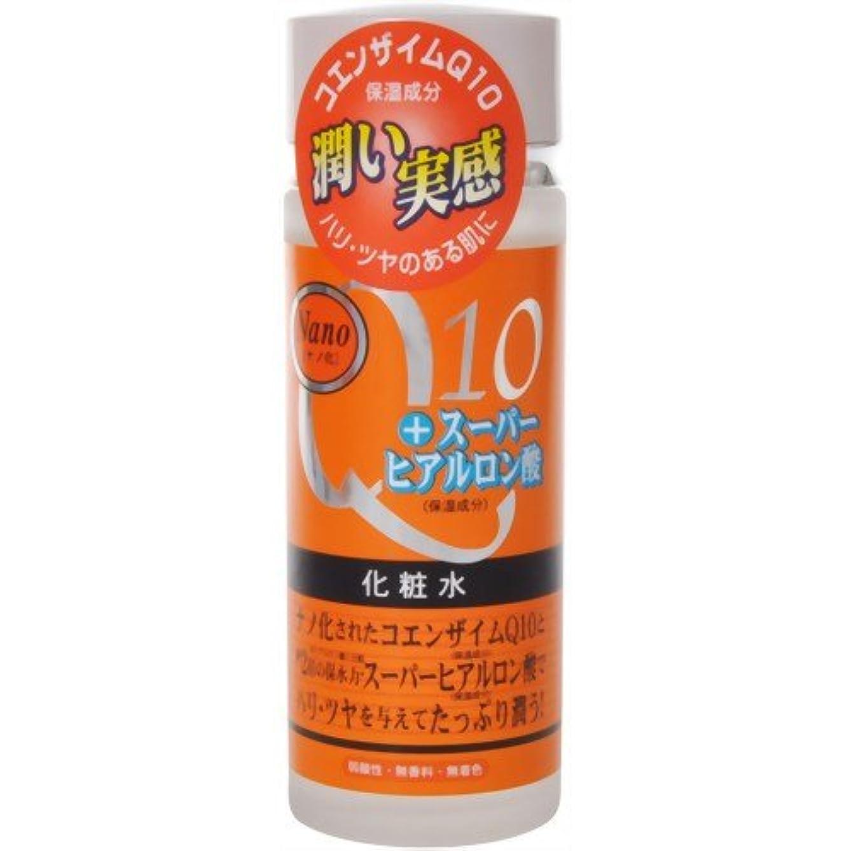 満たすと遊ぶシアーナノ化?コエンザイムQ10&スーパーヒアルロン酸化粧水 120ml