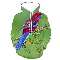 2021 3D Spring And Autumn Men's Psittaciformes Animal Print Hooded Funny Bird Korean Loose Hoodie Large Customizable