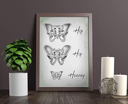 Kunstdruck - Hip Hip Hooray - DIN A3, DIN A4 - Geschenk, Mann, Kind, Becken, Anatomy, Frau, Medizin