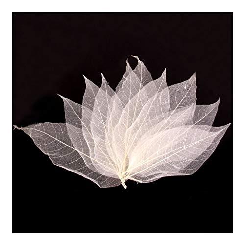 YUANYUAN520 Pantalla de lámpara Paquete de 50 Hojas Naturales Scrapbooking Diseño Floral del Arte DIY de Boda Paquetes Invitación Lampshades Scrapbooks -White (Color : 1)