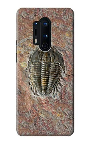 Innovedesire Trilobite Fossil Hülle Schutzhülle Taschen für OnePlus 8 Pro