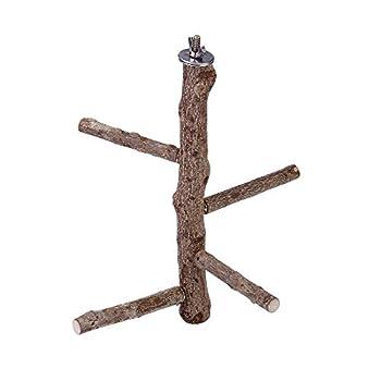 Filhome Perchoir en bois naturel pour perroquet - Perchoir en bois pour pinsons canaris