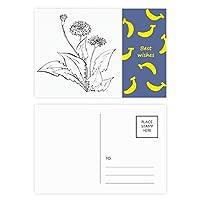 黒と白のタンポポの花の植物 バナナのポストカードセットサンクスカード郵送側20個