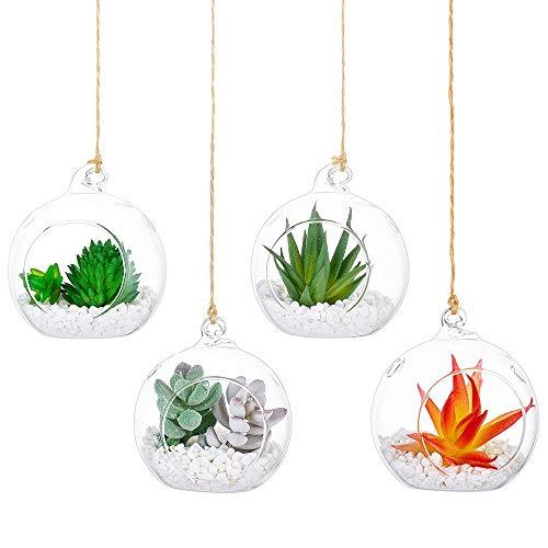 Nuptio 4 Stücke Hängen Glas Teelichthalter Globus Pflanze Terrarien/Glaskugeln Luft Pflanzen Teelicht Kerzenhalter Sukkulenten Moos Miniatur Garten Pflanzer Wohnkultur Garten DIY Geschenke